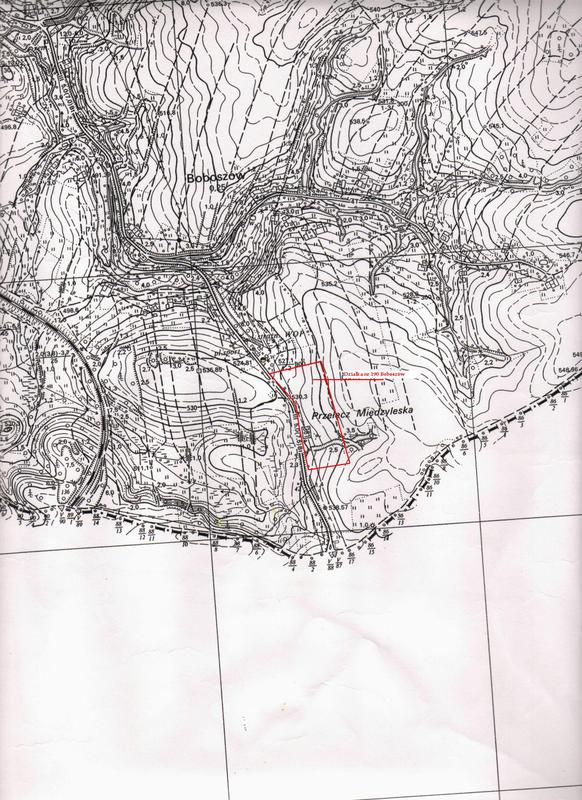 Mapa topograficzna Boboszów dz. 190 z lokalizacją działki.jpeg