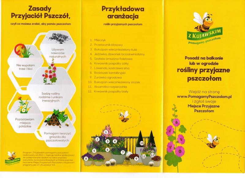 Pszczoły 1.jpeg