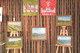 Galeria WYSTAWA W BIBLIOTECE ŚNIEŻNIK